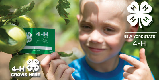 4-H intro image from https://nys4-h.org/