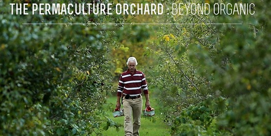 Movie Night: The Permaculture Orchard: Beyond Organic