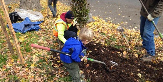 Brighton Tree Planting Event