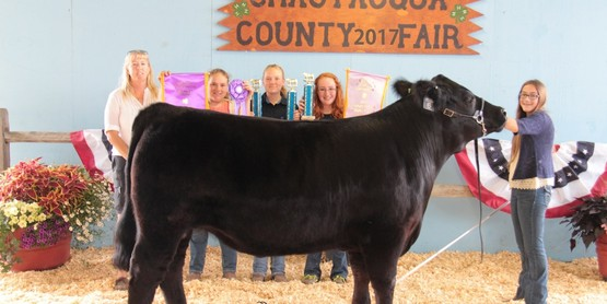 Decker Oil purchased the grand champion steer raised by Corinne Covert.