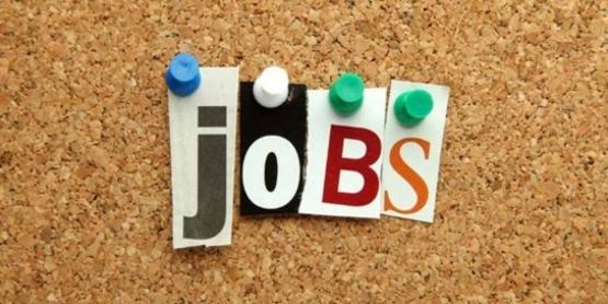 Cornell Cooperative Extension   Jobs