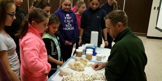 CCE Albany County 4-H Veterinary Science Program