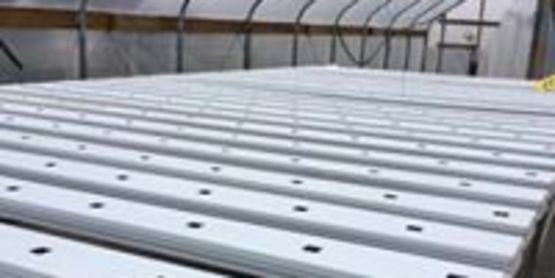 Baskets or Pallets: Controlled Environment Agriculture (CEA)