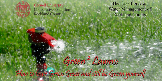 How to have Green Grass and still be Green yourself