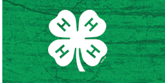 4-H Recognition Night