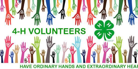 Volunteer to start a 4-H club