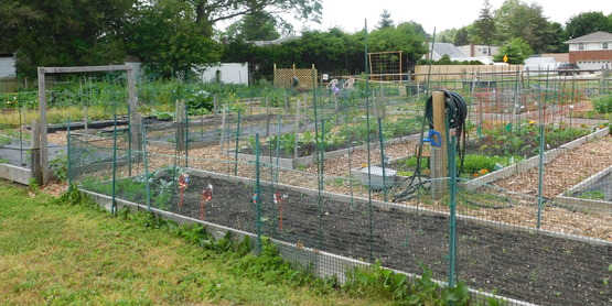 community gardens at east meadow farm