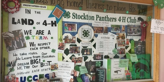 Pictured is one of the three displays the Stockton Panthers 4-H Club completed in the Sinclairville Library in celebration of National 4-H Week.