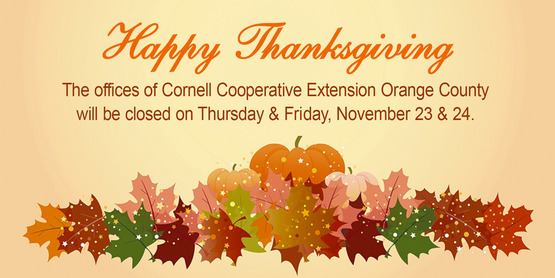 Thanksgiving Office Closing