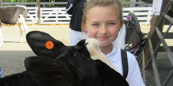 4-H member at a County Fair