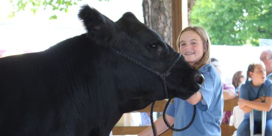 4-H member with reserve grand champion steer