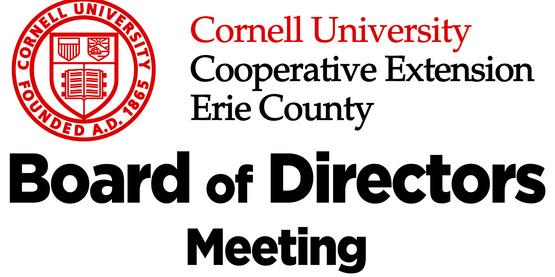 CCE Board of Directors Finance Committee Meeting