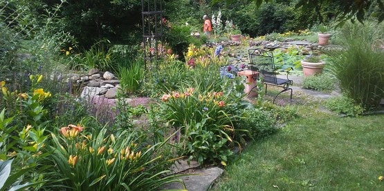 The Lion's garden in Lansing features multiple ponds, garden sculpture, perennial borders.