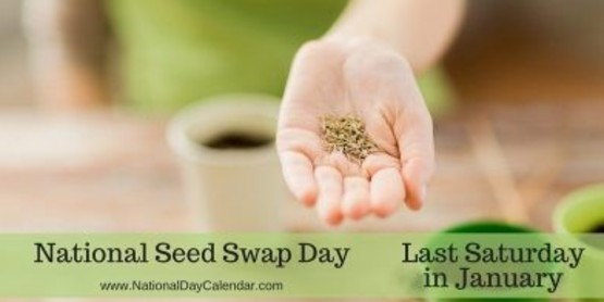 National Seed Swap Day is Saturday, January 27, 2018
