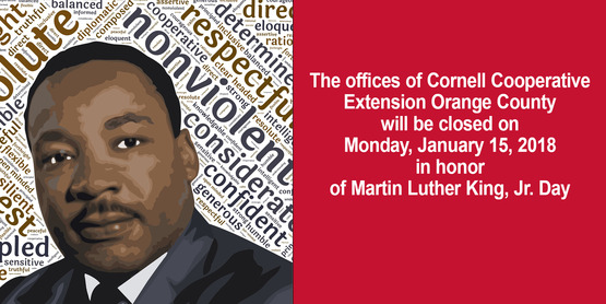 cceoc office will be closed on monday jan 15
