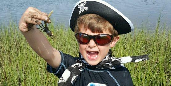 boy fiddler crab SAMC (1)