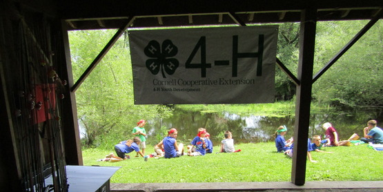 Fair Teen Leader/Assistant AND 4-H Camp Beechwood Counselor Applications Due