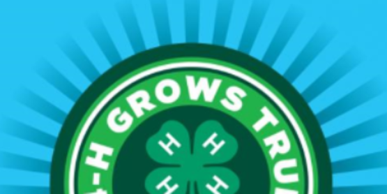 WANTED!  4-H Committee Members for the Otsego County 4-H Program.