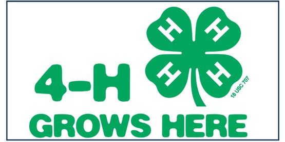 4-H Public Presentation Program and competitive Event