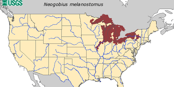 Map by USGS on HUC level record of round goby in the United States