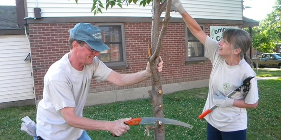 Fruit Tree Pruning Workshop