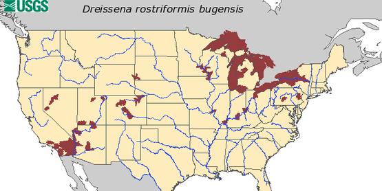 Quagga Mussel Map