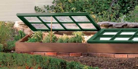 Learn about using cold frames in your home gardening.