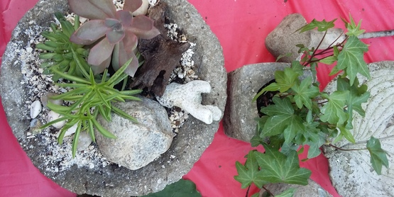 Hypertufa created at Ontario County Master Gardener class