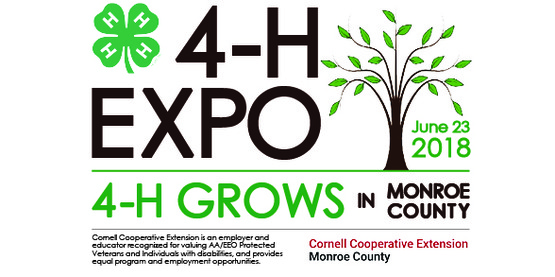 2nd Annual 4-H Expo
