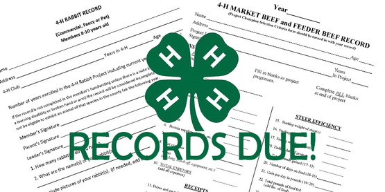 4-H records due