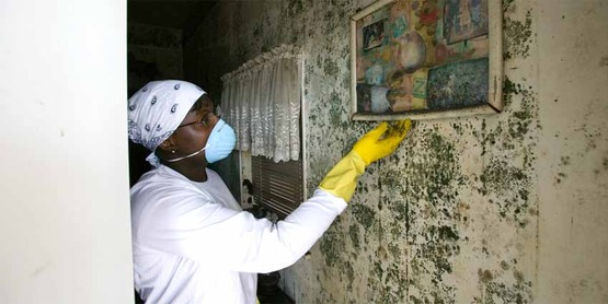 New Orleans resident searches for salvageable items in her home following Hurricane Katrina. Many homes were like this one with mold damage to the ceiling.  mold