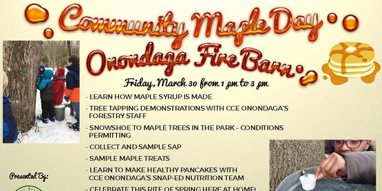 Community Maple Day at Onondaga Park