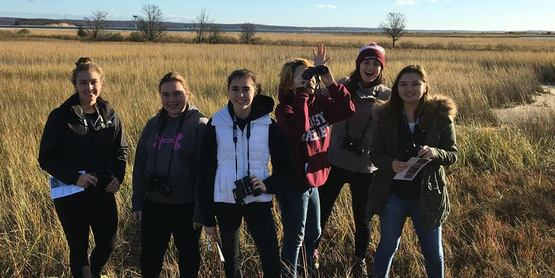 Students searching for shorebirds in the salt marsh