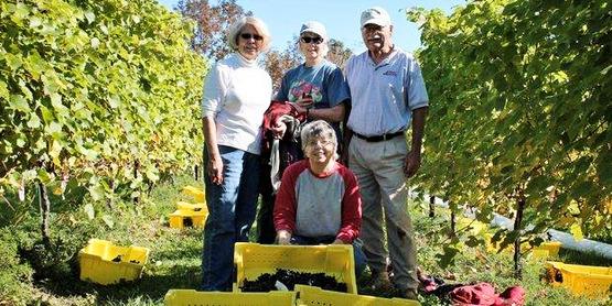 Master Gardeners at Coyote Moon Vineyards