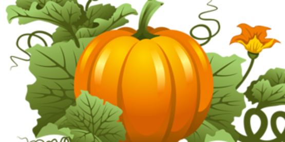 Grow a Giant Pumpkin Contest!