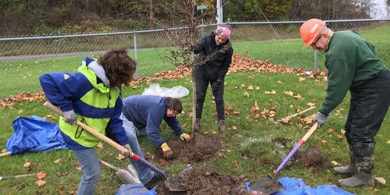 Upper Onondaga Park Tree Planting