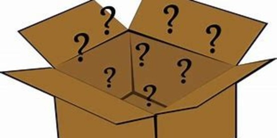 Mystery Box Cooking Challenge