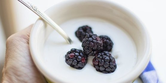 ​Yogurt Fermentation Workshop