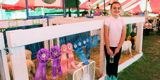 Jefferson County Fair