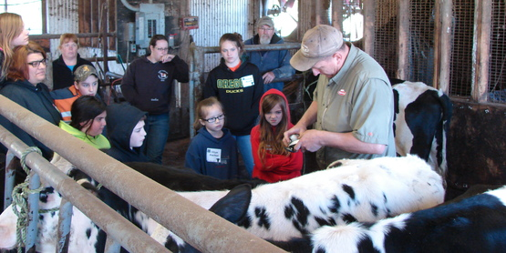 4-H Dairy Clinic