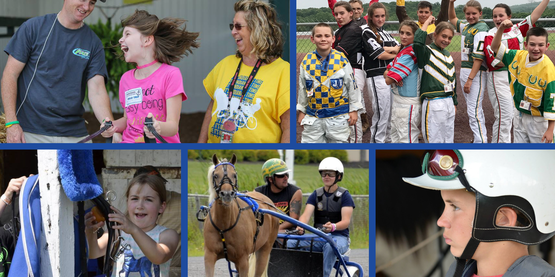 Intro to Harness Horse Racing