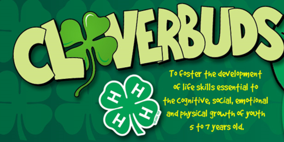 4-H Cloverbuds: Spring Exploration Classes