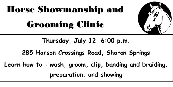 Horse Showmanship and Grooming Clinic