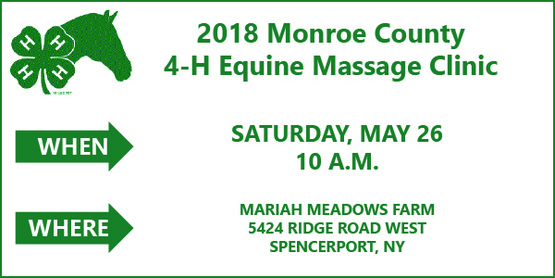 2018 Monroe County 4-H Equine Massage Clinic