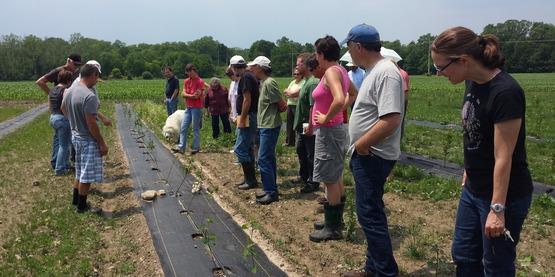 Juneberry Farm, Ovid, NY (Guy Lister and Jim Ochterski)