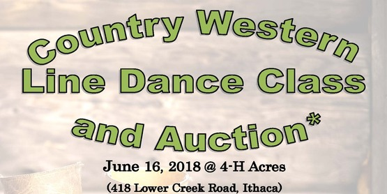 Come and join the fun at the 4-H Country Line Dance and Auction on June 16 at 4-H Acres.