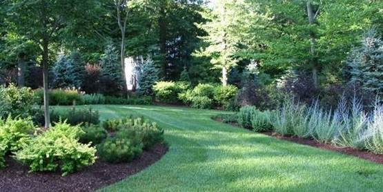 Landscaping with Trees & Shrubs