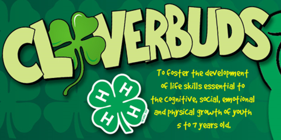 4-H Cloverbuds: Flying through the Summer