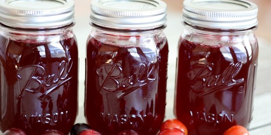 Food Preservation Classes: Preserving Blueberries