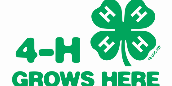 The 42nd  Annual  New York State  4-H Agribusiness Career Conference